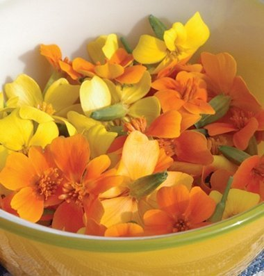 - David's Garden Seeds Flower Nasturtium Jewel Mix DE1420 (Multi) 50 Non-GMO, Heirloom Seeds