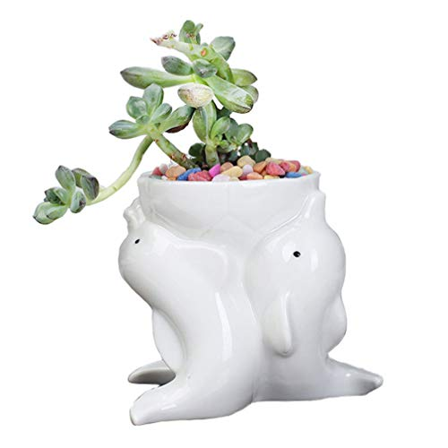 Nordic Style Ceramic White Dolphin Planter Pot Succulent Plant Pot Pen Holder Pencil Cup Brush Holder Pot Holder Desk Organizer Home Office Room Decor