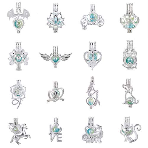 Mixed 16pcs Dragon Cat Owl Carriage Silver Pearl Cage Beads Cage Locket Pendants DIY Necklace Bracelet Jewelry Making Supplies-for Oyster Pearls, Essential Oil Diffuser, Fun Gifts (Mixed 16pcs-3) ()