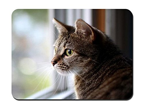 Cat Face Eyes Sadness Window Glass Waiting Mouse Pad - - Cat 379