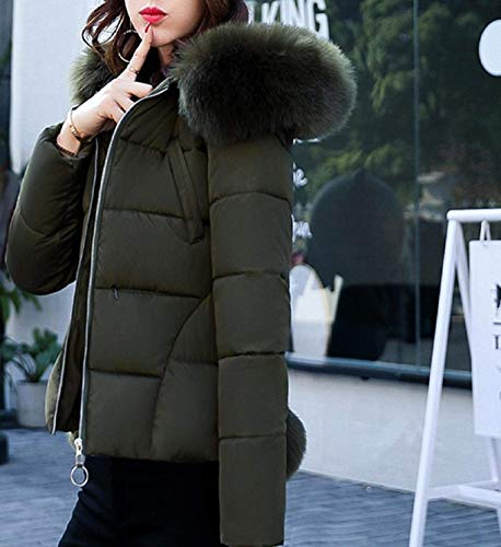 Outdoor Women's Leisure Zip Longsleeve Coat Fit Rosa Mode Fur Hood Solid Jacket Jacket Down Down Elegant Coat Winter with Slim Warm Short Color Quilted ZrSZ6