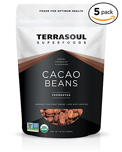 Terrasoul Superfoods Raw Criollo Cacao Beans (Organic), 5 Pounds