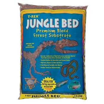 T-Rex Jungle Bed - 10 qt