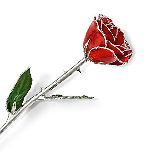 - Lacquer Dipped Silver Trimmed Red Rose