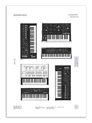 Art Poster Synths Florent Bodart from Wall Editions