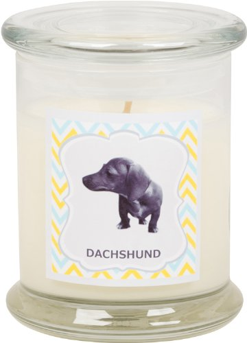 Aroma Paws Breed Candle Jar, 12-Ounce, Dachshund by Aroma Paws