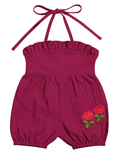 - Oklady Baby/Toddler Girl's Ruffled Embroidered Short Romper Onesies 12-18 Months