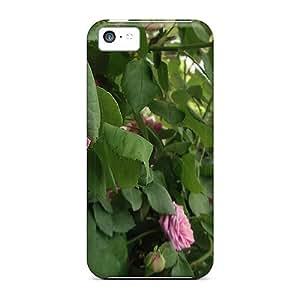 Iphone 5c Case Bumper Tpu Skin Cover For Vela In Litore Accessories