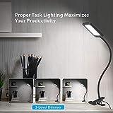 TROND LED Clamp Desk Lamp Task Light