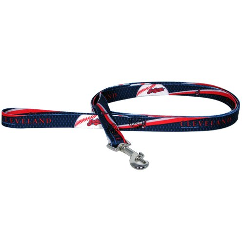 MLB Cleveland Indians Pet Lead, Large, Team Color
