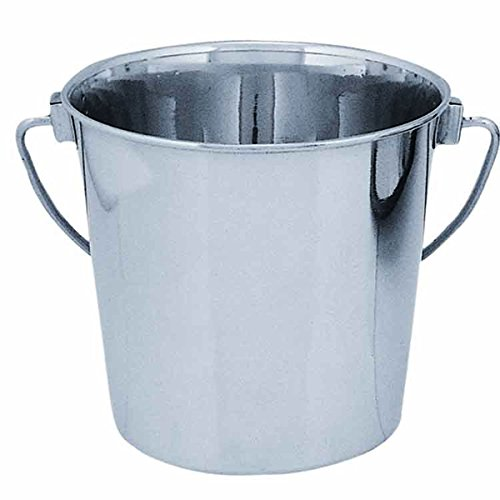 (Qt Dog Round Stainless Steel Bucket, 6 Quart)