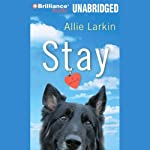 Stay: A Novel | Allie Larkin