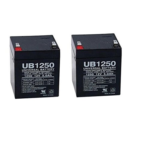 Razor E100 Electric Scooter battery 12V 5AH - 2 Pack - UPG Brand (With Flashlight Bundle) Razor E100 Battery