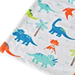 HOMRITAR-Baby-Blanket-for-Kids-Super-Soft-Minky-Blanket-with-Dotted-Backing-Toddler-Blanket-with-Dinosaurs-Multicolor-Printed-30-x-40-Inch-75x100cm