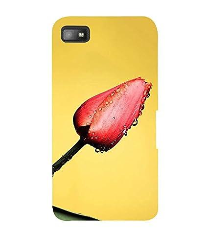 cheaper 9c0ed 783b7 iFasho Designer Back Case Cover for BlackBerry Z10: Amazon.in ...