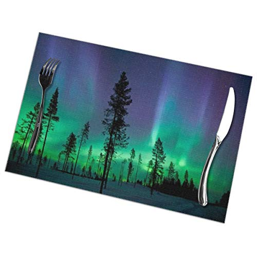 (Placemats for Dining Table, Heat Insulation Stain Resistant Table Mat Set of 6 Non Slip Washable Tray Mat Durable Place Mats for Kitchen Dining Room Table Decoration - Aurora Polaris)