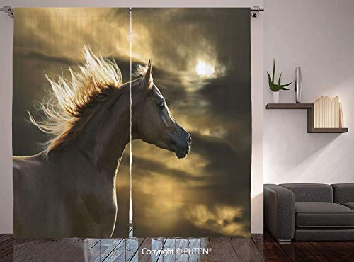 Thermal Insulated Blackout Window Curtain [ Horse Decor,Chestnut Horse Profile on Dramatic Cloudy Sunset Sky Strong Wild Young Mammal Decorative,Brown Yellow ] for Living Room Bedroom Dorm Room Classr