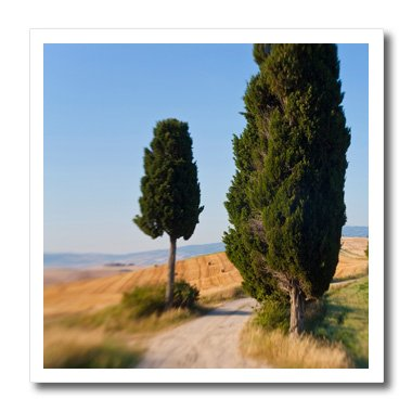 danita-delimont-italy-winding-road-val-d-orica-tuscany-italy-10x10-iron-on-heat-transfer-for-white-m
