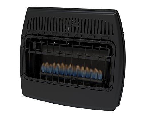 Buy propane wall heater direct vent