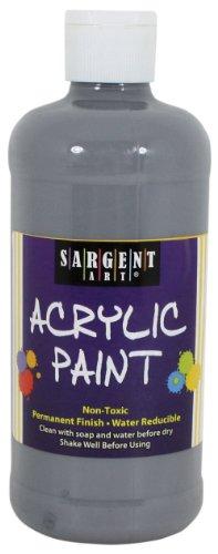 Sargent Art 24 2484 16 Ounce Acrylic
