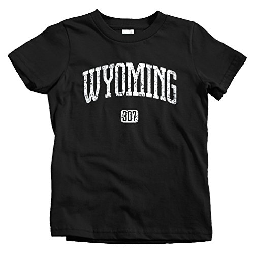 Smash Transit Kids Wyoming 307 T-Shirt - Black, Toddler 3T ()