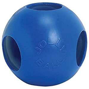 Jolly Pal Fun Ball Blue