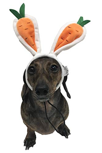 Easter Dog Costumes - Midlee Carrot Bunny Ears Easter Dog