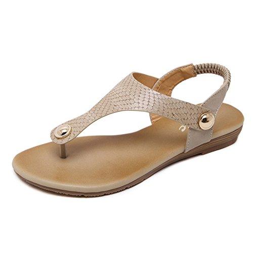 Zicac Women's Elastic Ankle Strap Gladiator Thong Sandals Flats Flip-flops (8, (Elastic Thong Flip Flops)