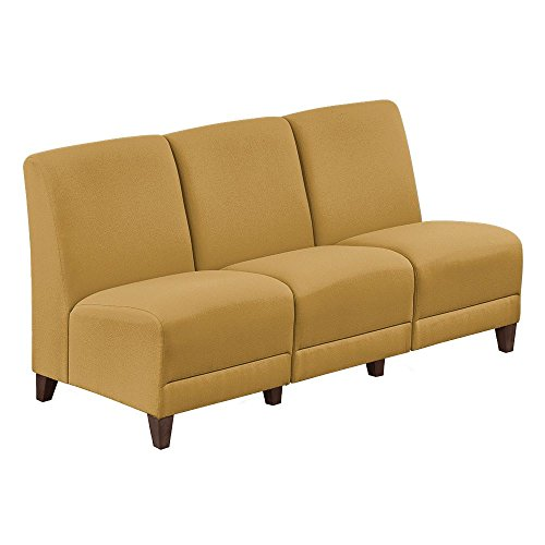 Armless Sofa in Fabric - 64.5''W Gold Fabric/Walnut Finish Dimensions: 64.5''W x 29.5''D x 32.5''H Seat Dimensions: 18''H Weight: 126 lbs by NBF Signature Series