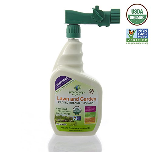 Spray Spider Mites (Greenerways Organic Insecticide, Backyard Insect Repellent, Natural Insect Killer Concentrate, USDA Organic, Non-GMO, Non Toxic, Insect Repellant, Outdoor Bug Spray, Mosquito Repellent - 32oz Sprayer)