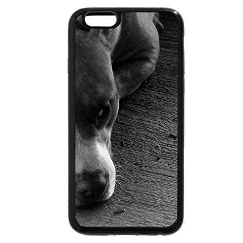 iPhone 6S Plus Case, iPhone 6 Plus Case (Black & White) - butter the dog