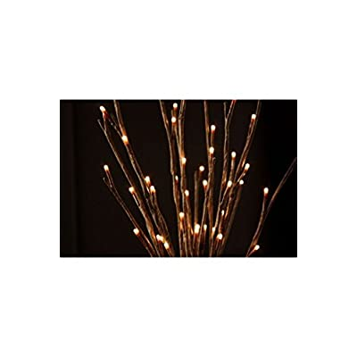 The Light Garden WLWB60 184136 Decorative Lights, 20-Inch - Incandescent Bulbs - .com