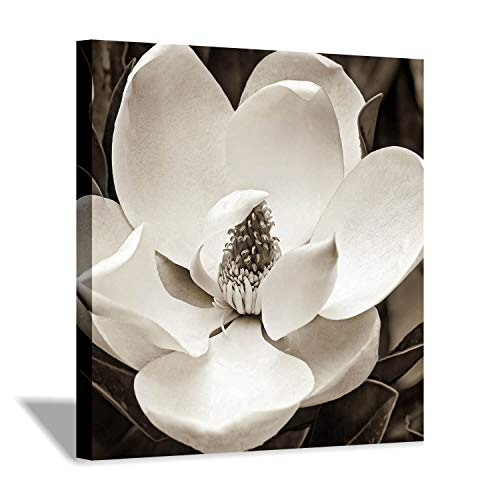 Blossom Canvas Wall Art Picture: White Magnolia Flower Painting Floral Prints Artwork for Bathroom Decor (24'' x 24'' x 1 Panel)