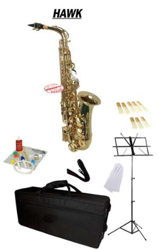 Hawk Gold Alto Saxophone School Package with Case Reeds Music Stand and Cleaning Kit WD-S414-GL-PACK