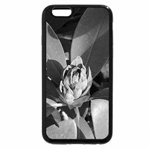 iPhone 6S Plus Case, iPhone 6 Plus Case (Black & White) - Garden Festival 39