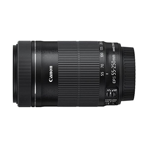 RetinaPix Canon EF-S 55-250mm f/4-5.6 is STM