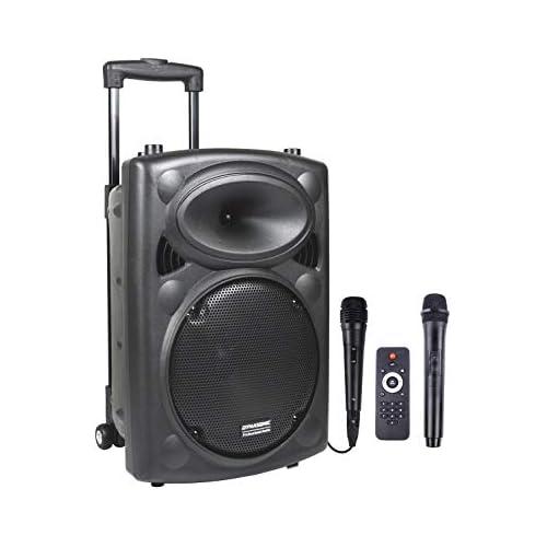chollos oferta descuentos barato DYNASONIC Dynapro 10 Altavoz Inalámbrico Sistema Audio Profesional Megafonia Portátil Lector USB Bluetooth Radio FM y Micrófonos Color Negro DYNAPRO 10