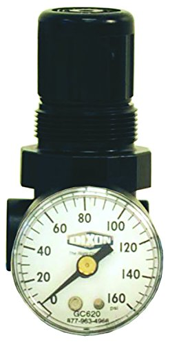 Dixon R91-221RG 1/4'' Series-1 Mini Water Regulator with Gauge, Non-Relieving Type, Metal/Plastic by Dixon Valve & Coupling