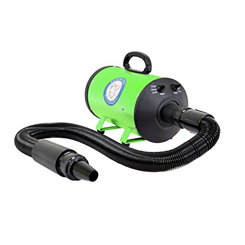 Flying Simple Dog Cat Pet 3.0 Hp Hair Grooming Force Dryer with Heater (Green)
