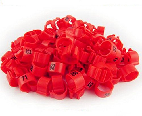100pcs/lot 3mm 1-100 Numbered Clip snap Plastic Bird Ring Leg Bands Parrot Finch Canary Grouped (red) by freen-p