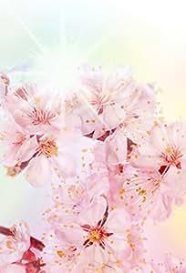Papel Pintado Fotográfico de primavera Flores 170x 250cm Decoración Póster cenefa pared Tatoo