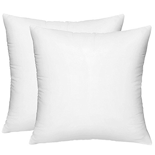 HIPPIH 2 Pack Pillow Insert - 18 x 18 Inch Hypoallergenic Decorative Square Sofa and Bed Pillow Form Inserts (18 Pillow Insert)