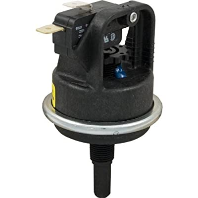 Raypak 006737F Pressure Switch 1.75 Psi-Kit : Automotive Equipment : Garden & Outdoor