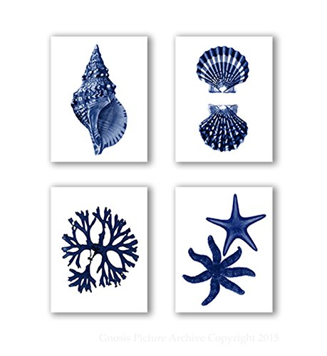 Navy Blue Beach Wall Art Decor Set of 4 Unframed Prints Coastal Home Decor (Navy Coral Picture)