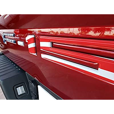 EyeCatcher Pro Series Tailgate Letter Inserts fits 2020-2020 Ford F150 (USA Flag): Automotive