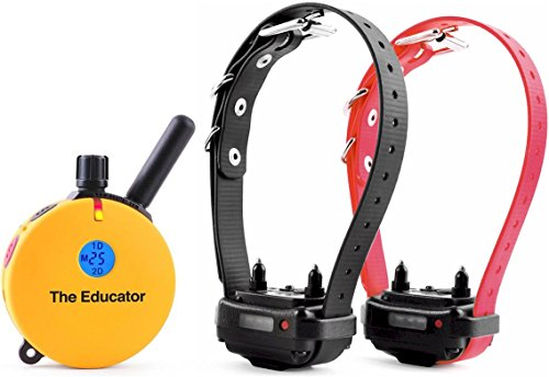 Educator ET-402 Two Dog 3/4 Mile E-Collar Remote Dog Training Collar With Vibration, Tapping Sensation and Pavlovian - Einstein Lcd