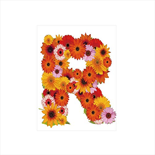 - Decorative Privacy Window Film/Gerbera Daisies Abloom in R Symbol Shape Summer Time Flowers Spring Bouquet Print/No-Glue Self Static Cling for Home Bedroom Bathroom Kitchen Office Decor Multicolor