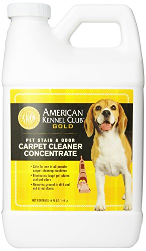 American Kennel Club Gold 2X Carpet And Upholstery Concentrate Cleaning Solution  48 Ounce