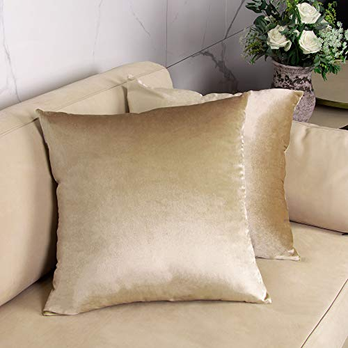 GuildreyTex Pack of 2, Cozy Velvet Square Throw Pillow Cover, Soft Solid Decorative Cushion Pillowcases for Couch, Bed and Car, 20 x 20 Inches Champagne (Champagne Bedding)