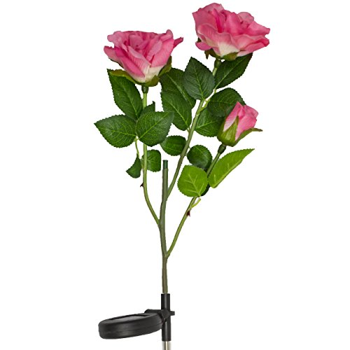 LED Concepts SLR-RSPI Solar Powered Garden Outdoor Decorative Landscape Lights Year, Pink Rose by LED Concepts